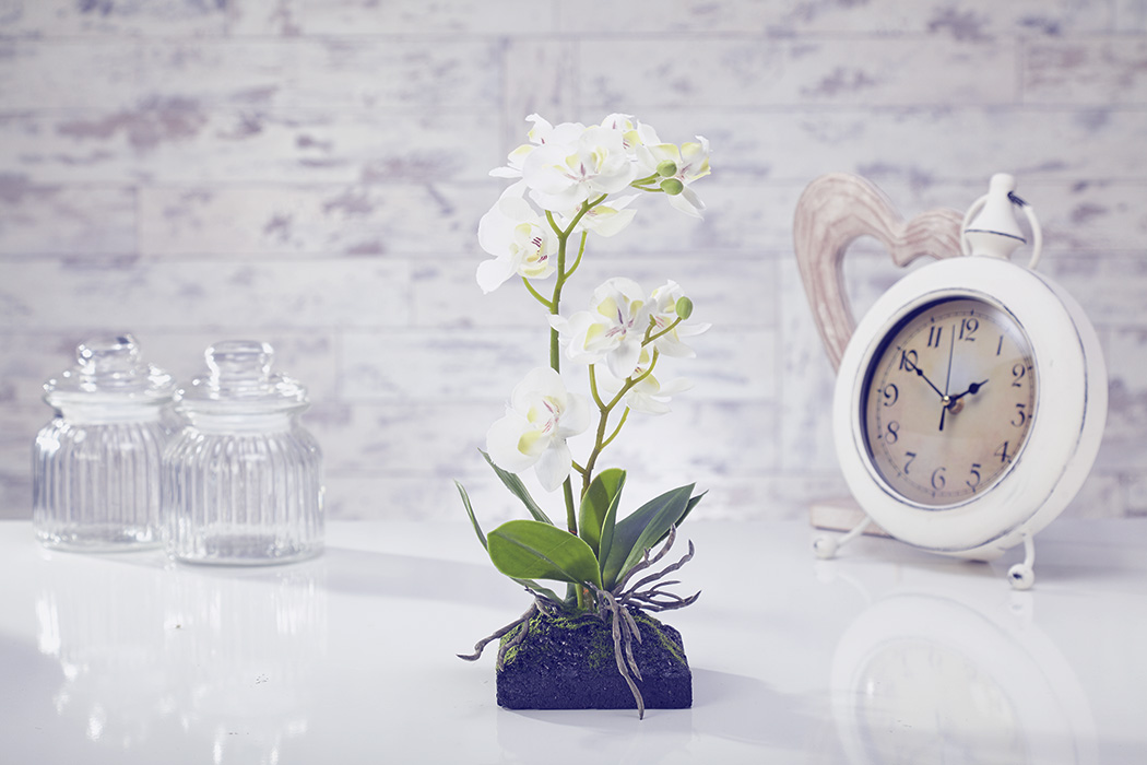 Artificial Flowers Plants Garden Home Orchid Moss & Root in White set of 5