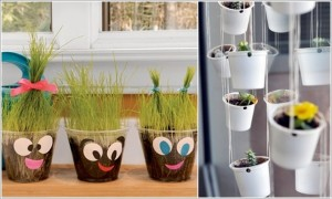 Fun planters for the kitchen