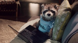 Usain's racoon mate from the Virgin advert. Perfect 10.