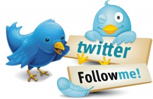 Build your followers