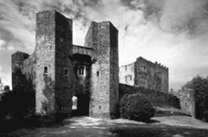 Berry Pomeroy Castle - spot the lady
