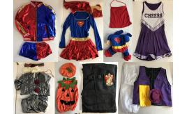 One Off Joblot of 28 Mixed Fancy Dress Items - Adults, Kids & Pets - Good Mix