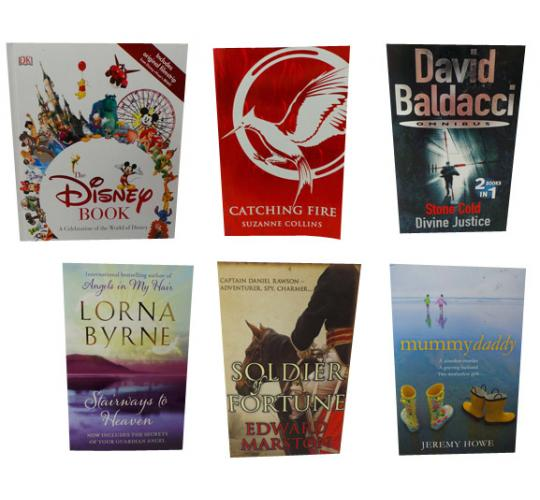 One Off Joblot of 12 The Disney Books & 15 Paperback Books 13 Titles